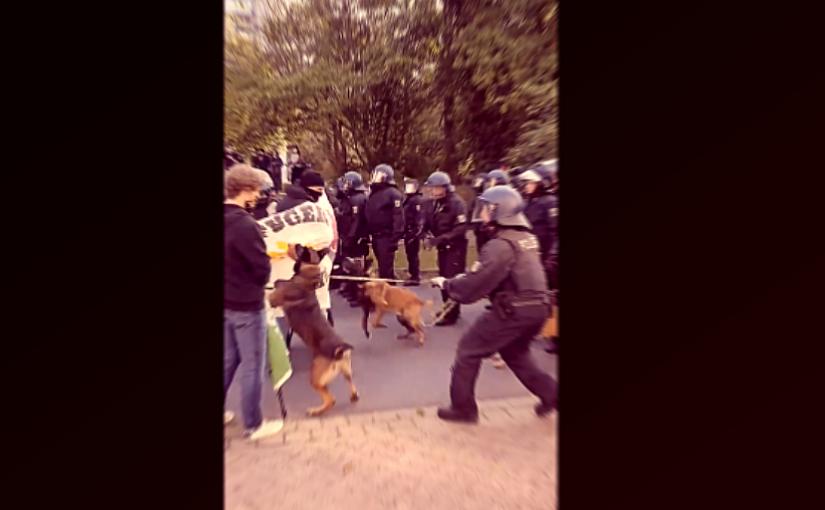 Polizeigewalt gegen Anti-AfD-Demonstranten – Hilfe für Rechtsextremisten?